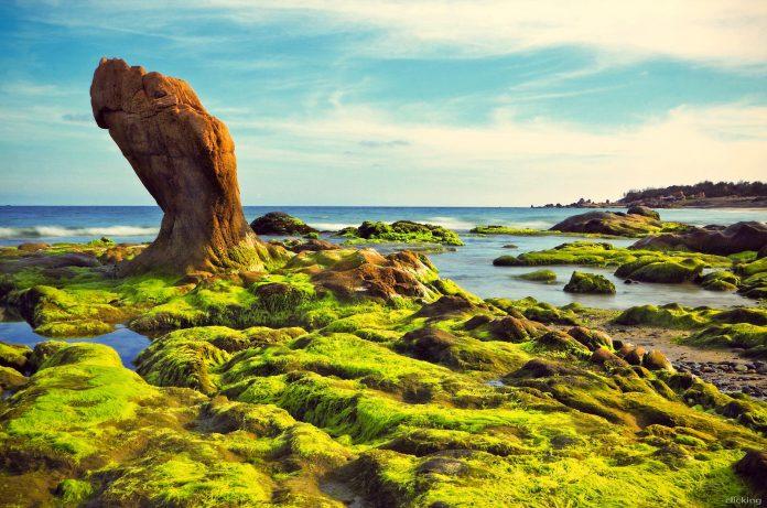 11 bí quyết chụp ảnh phong cảnh đẹp và ấn tượng cho bạn - 11