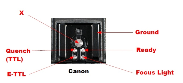 Thiết kế hot shoe của Canon